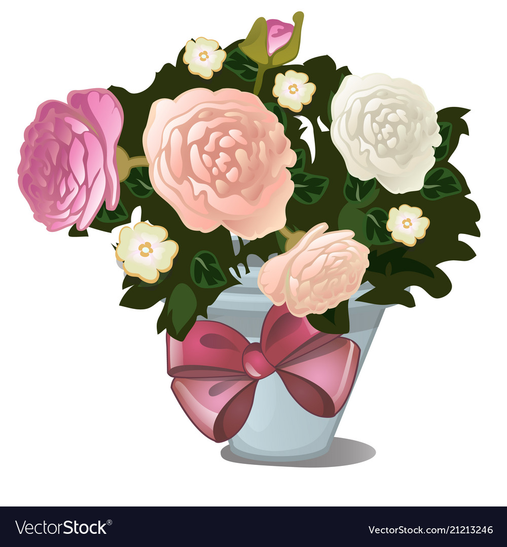 A gift of potted flowers isolated on white vector image mightylinksfo