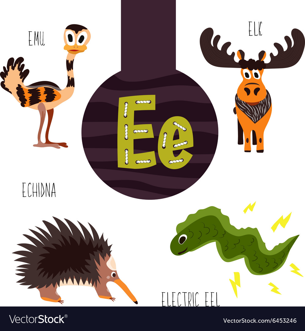 Fun animal letters of the alphabet for the