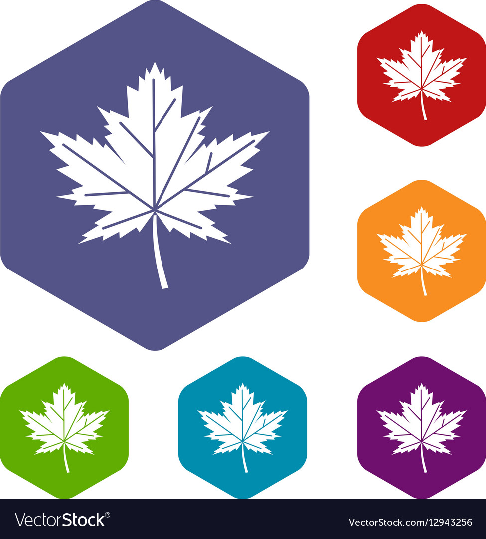 Maple leaf icons set