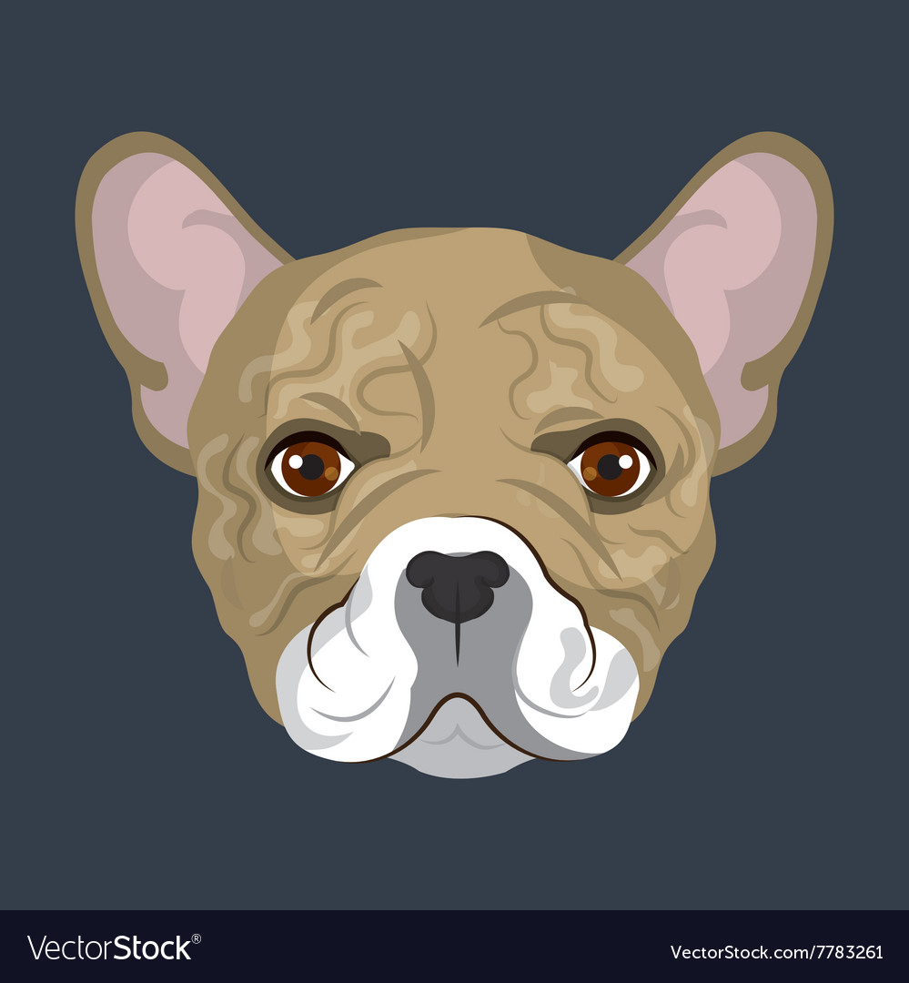 Bulldog breed design