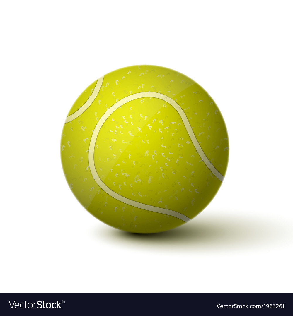 Realistic Tennis Ball Icon vector image
