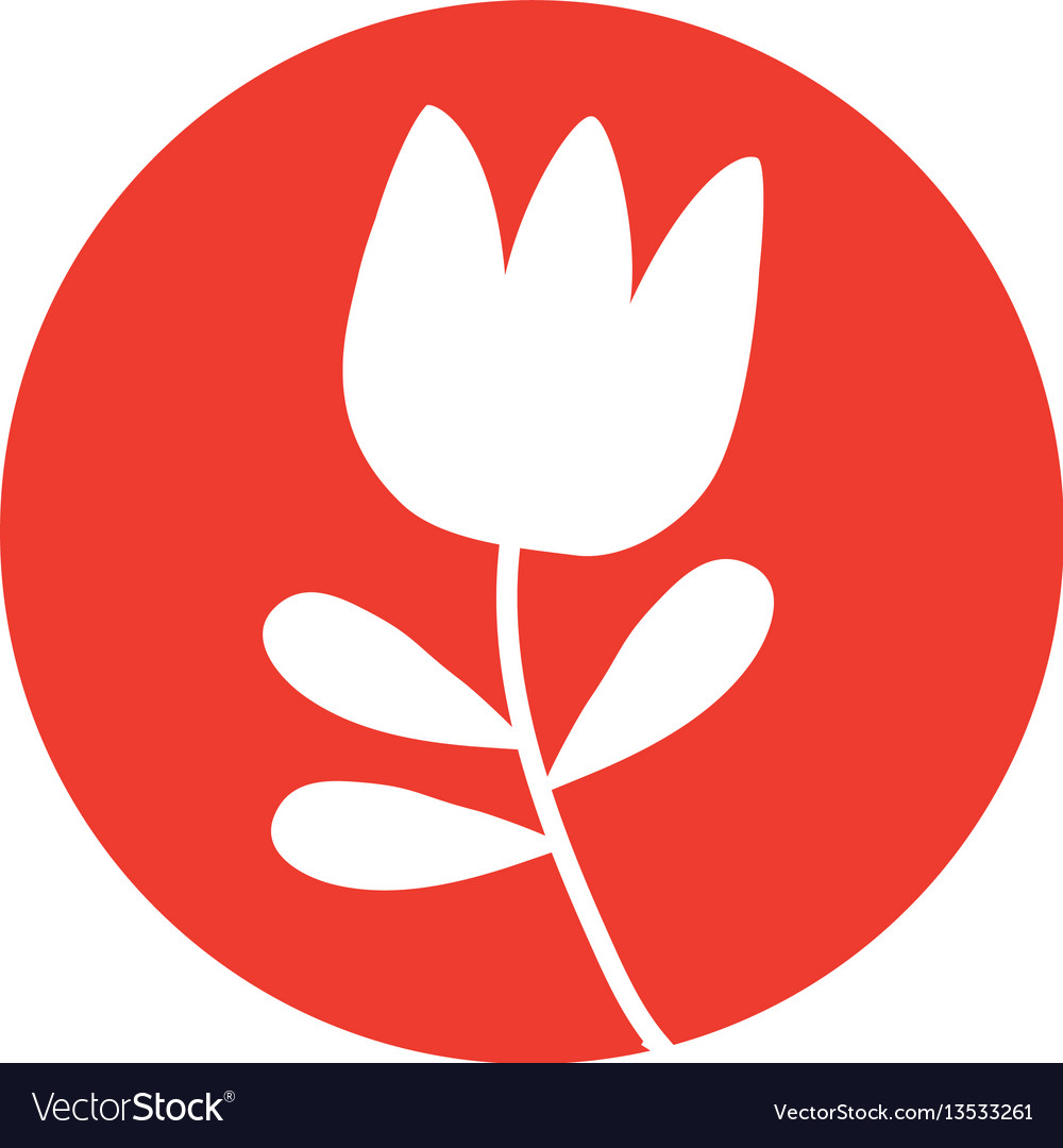 Tulip flower natural icon vector image