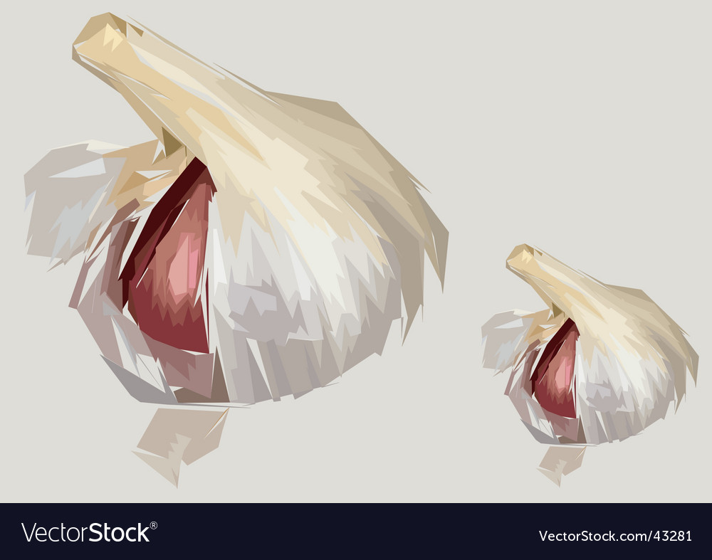 cloves of garlic. Garlic Clove Artistic Render