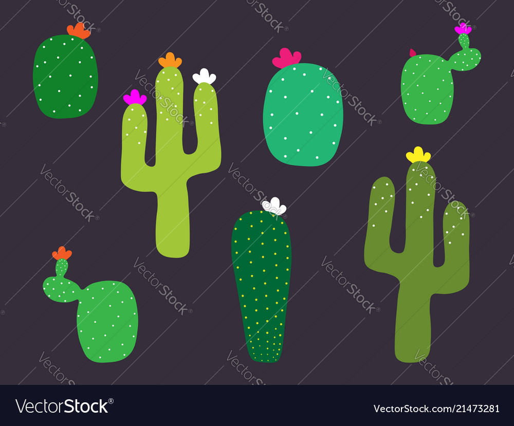 Mexican cactus flower collection cactus pattern