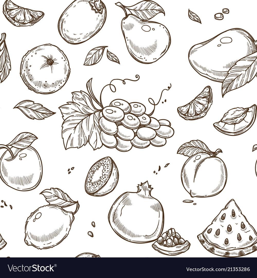 Fruits sketch seamless pattern background