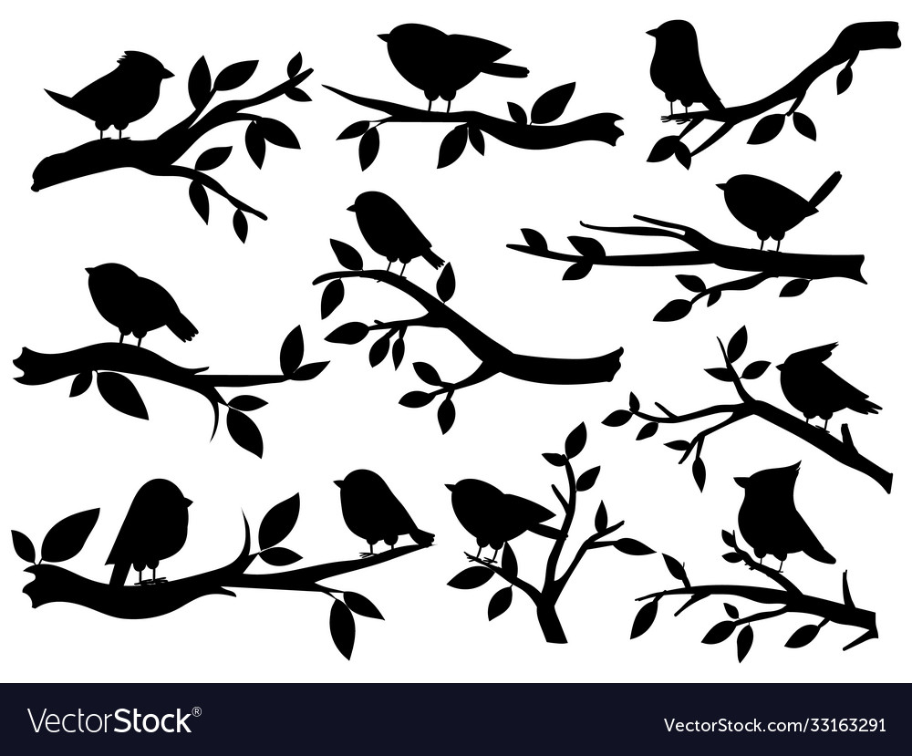 Bird and twig silhouettes cute birds and on