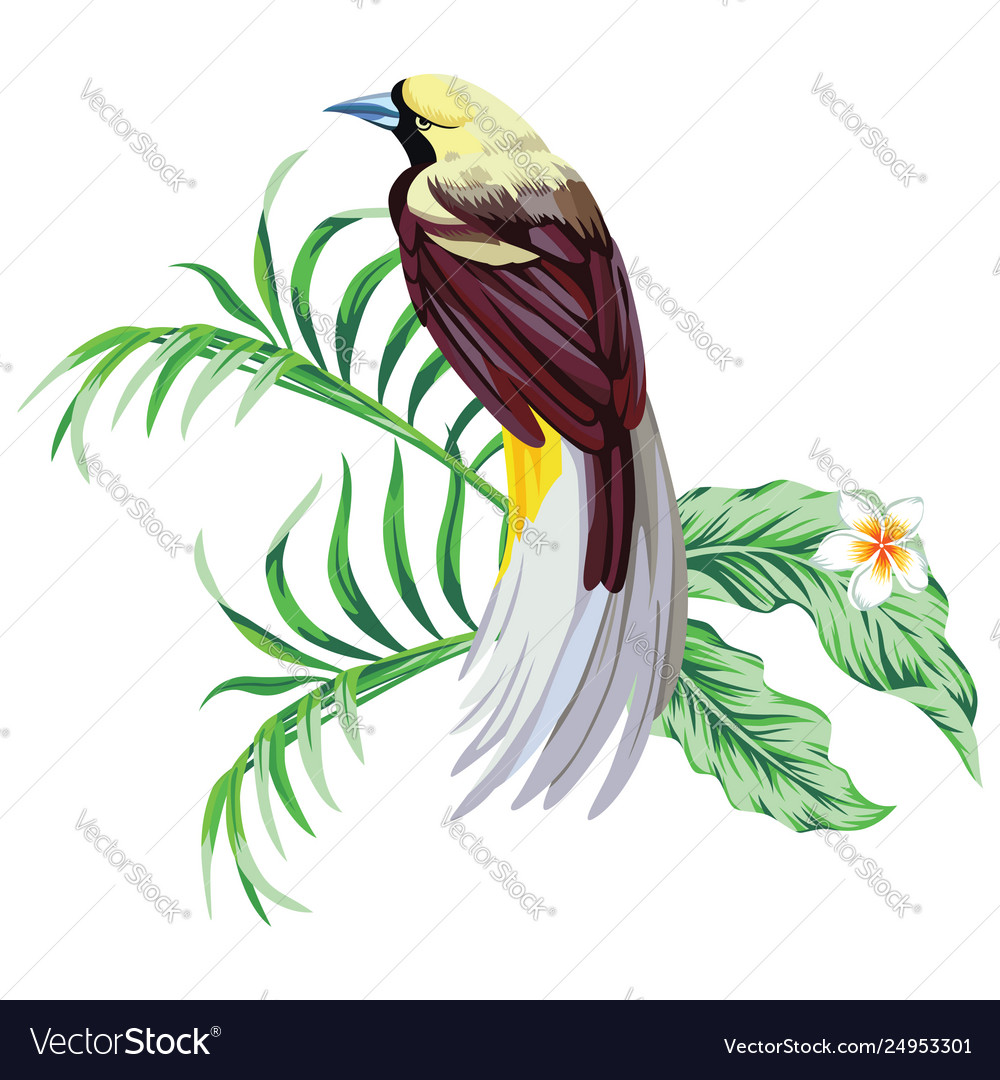 Tropical Bird With Plant Print Wallpaper