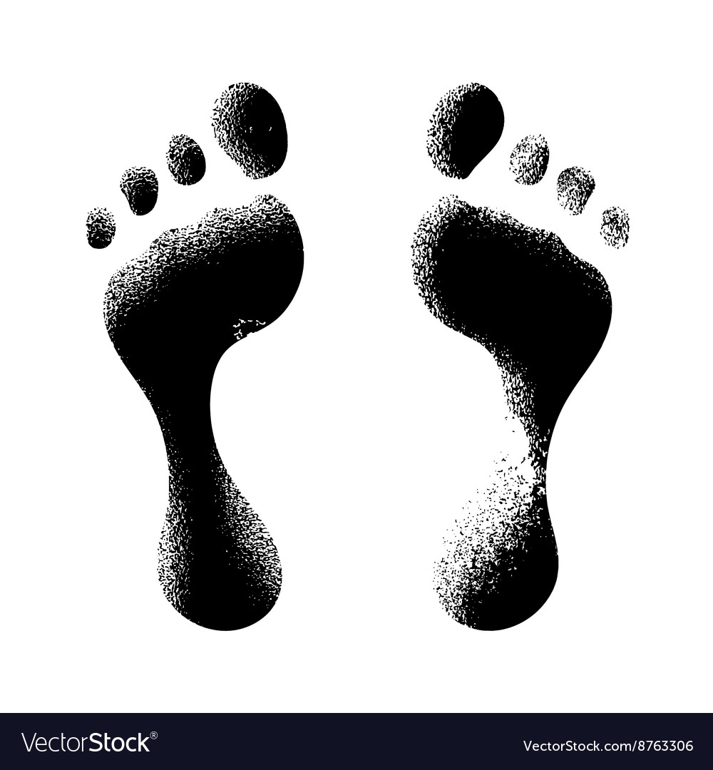 Human footprints vector image