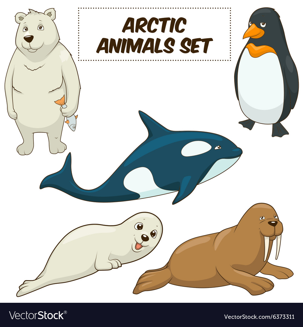 Cartoon arctic animals set