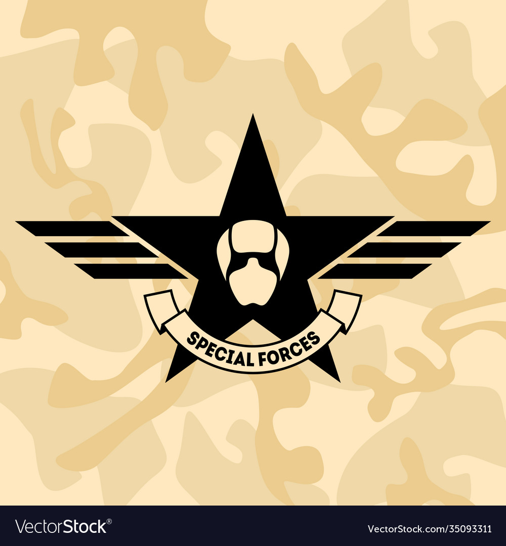 Special forces airforce fighter armed forces