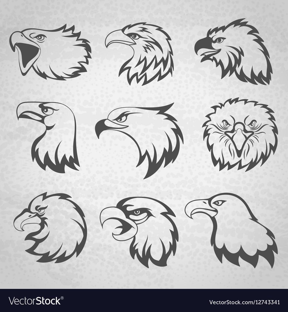 Hawk falcon or eagle head mascot set isolated on