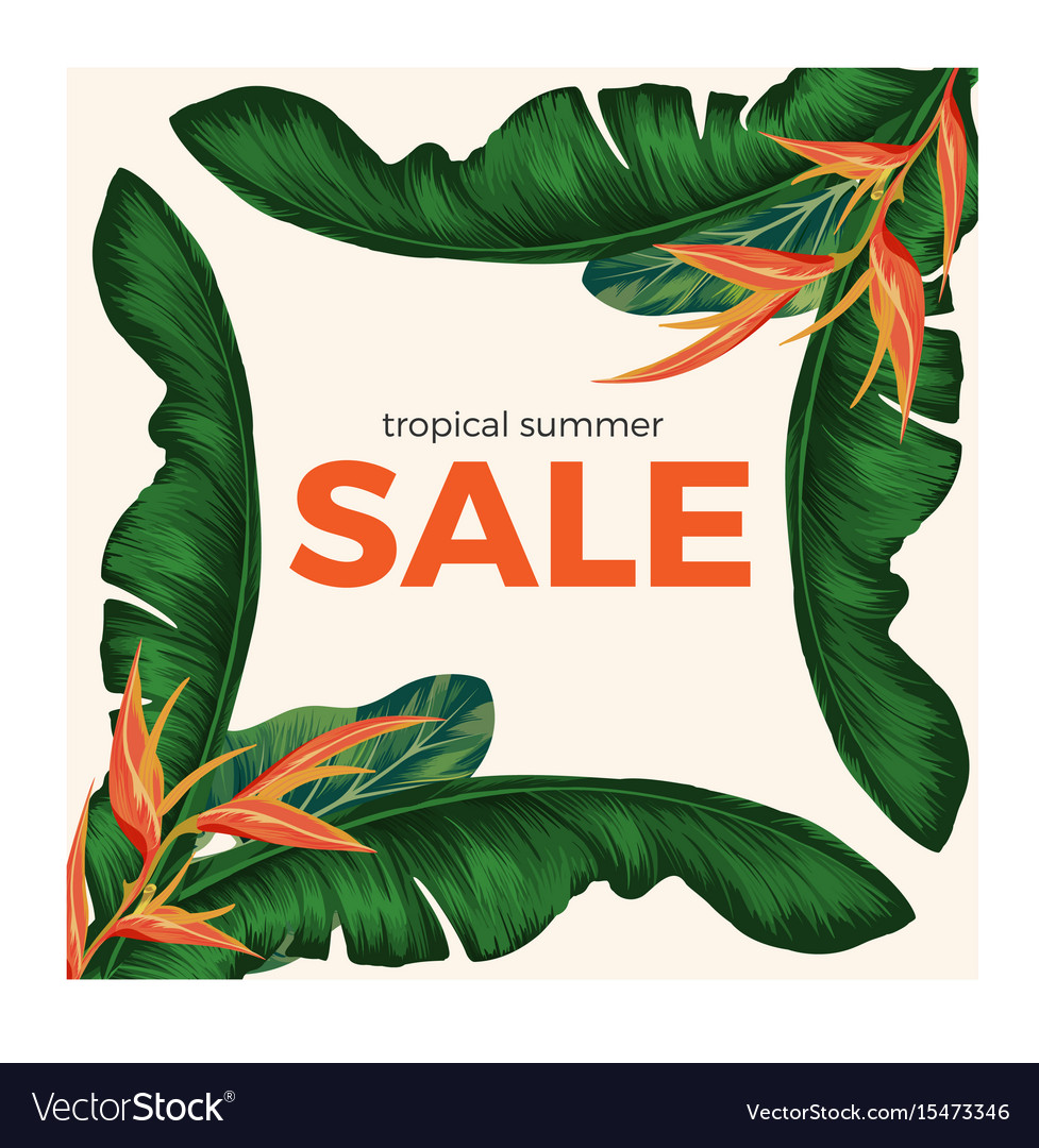 Tropical summer sale promo poster with rainforest