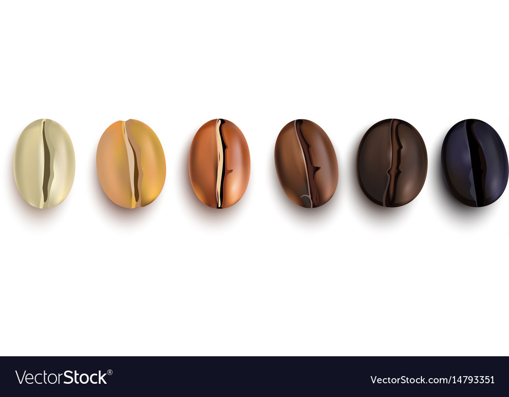 Coffee beans roast stages