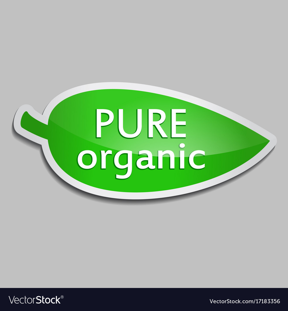 Green sticker pure organic vector image