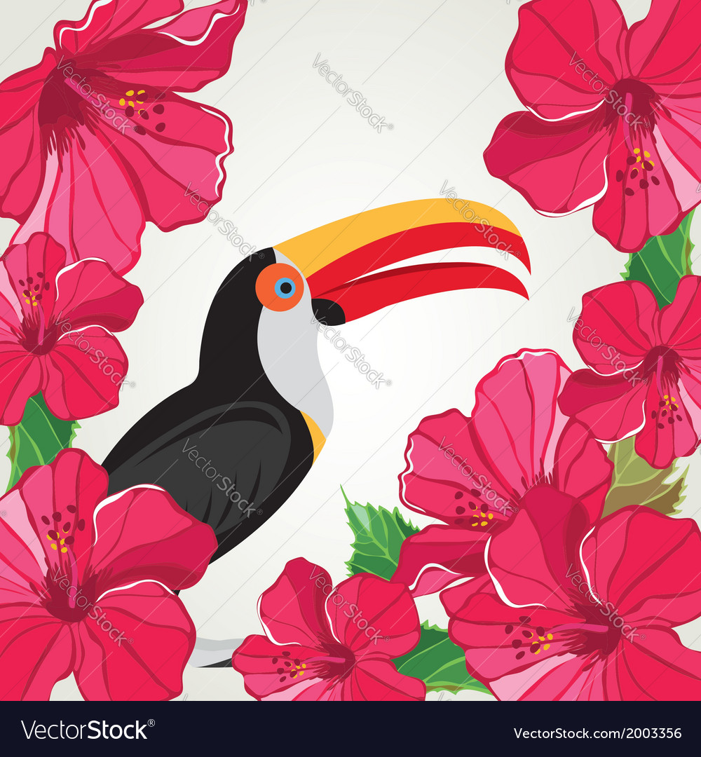 Toucan with beautiful flowers