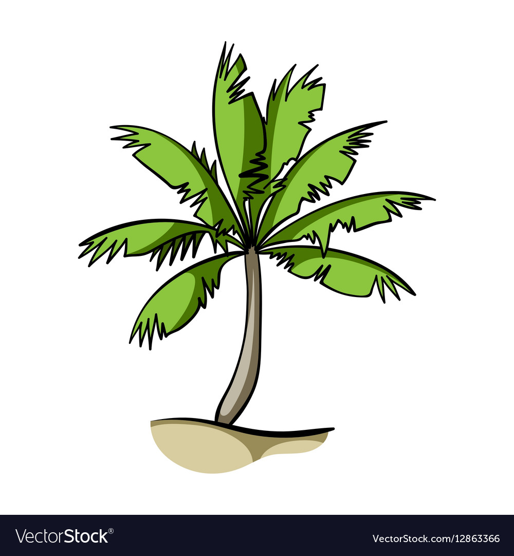 Palm tree icon in cartoon style isolated on white