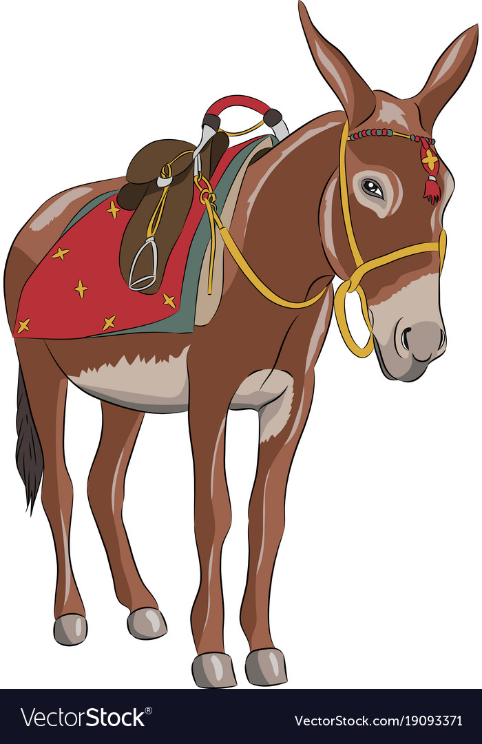 A donkey with a saddle