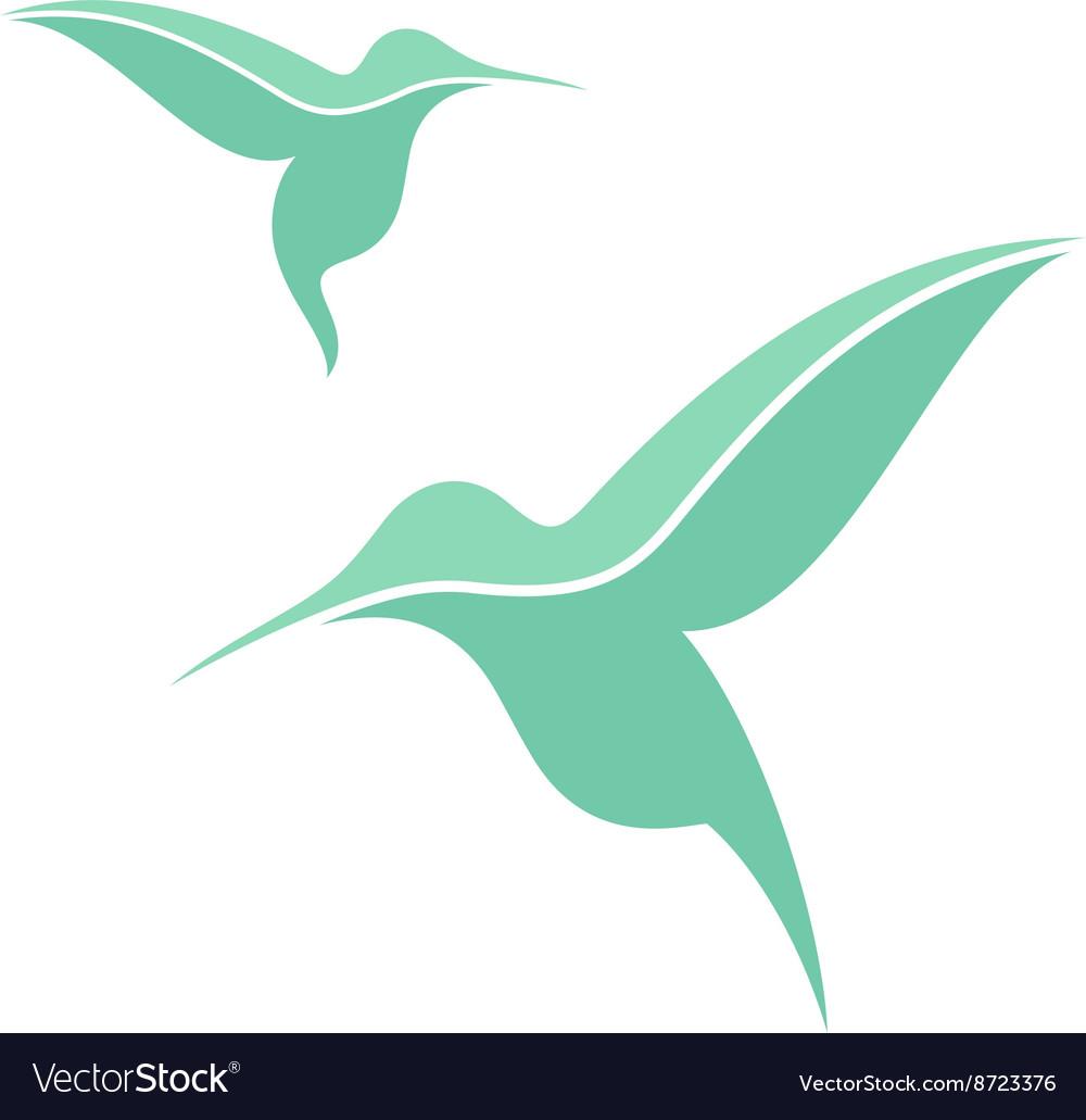 Exotic bird Hummingbird