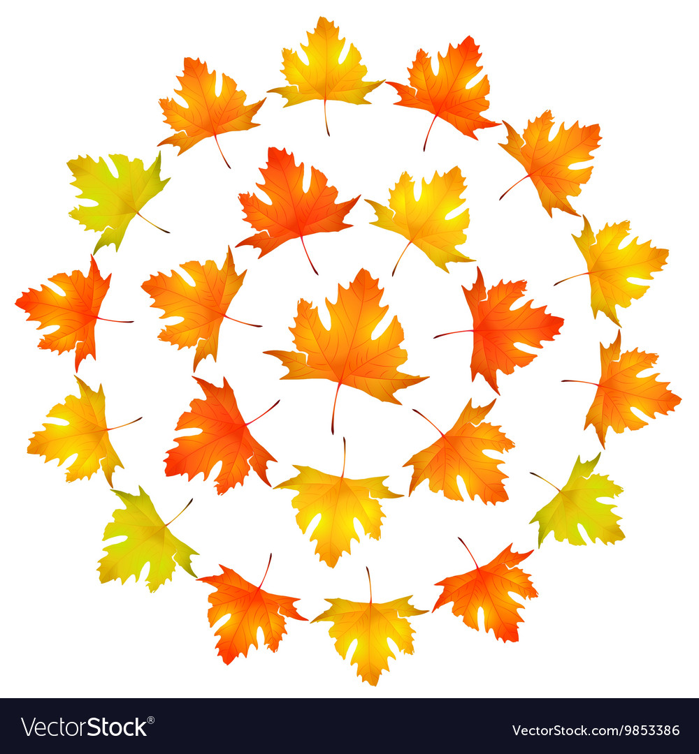 Maple leaves round frame Royalty Free Vector Image
