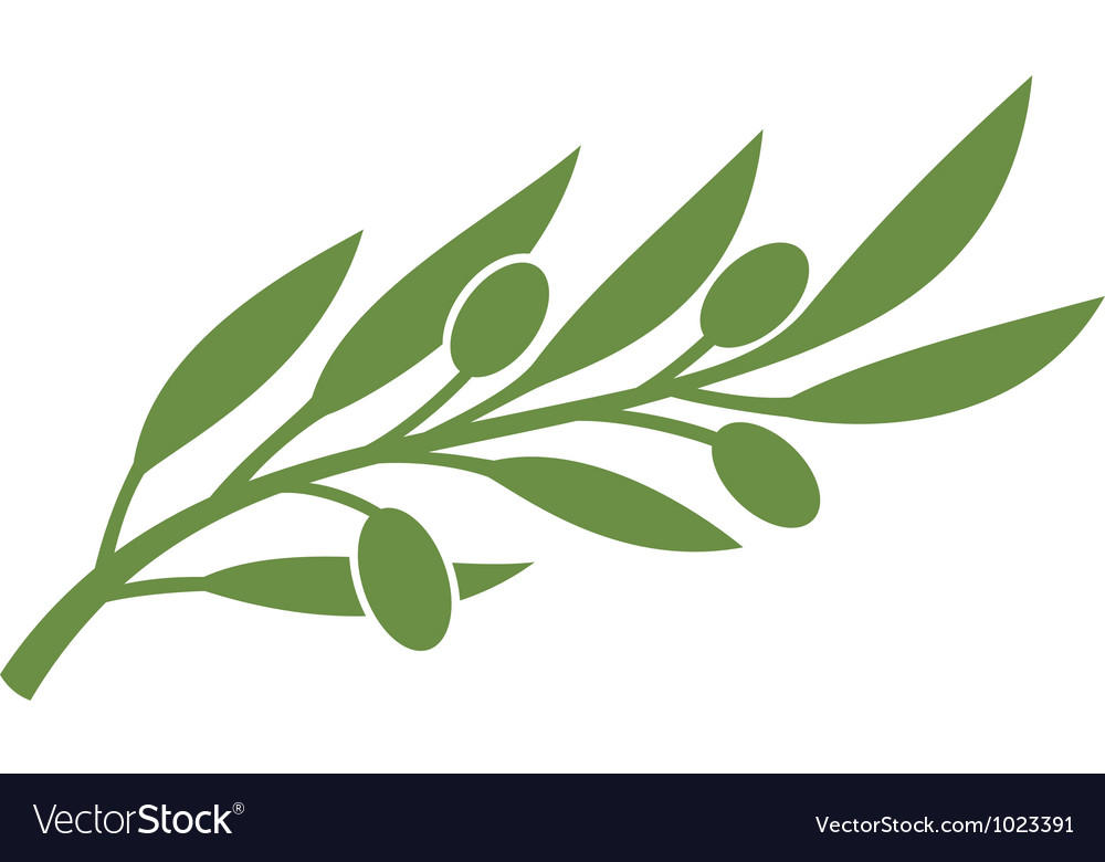 Green Olive Branch Symbol Royalty Free Vector Image