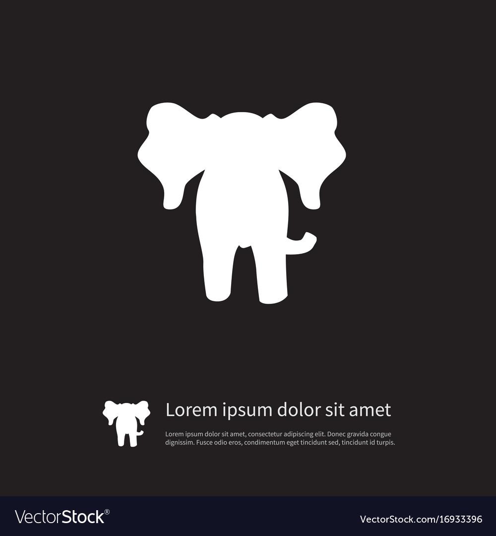 Isolated elephant icon proboscis element