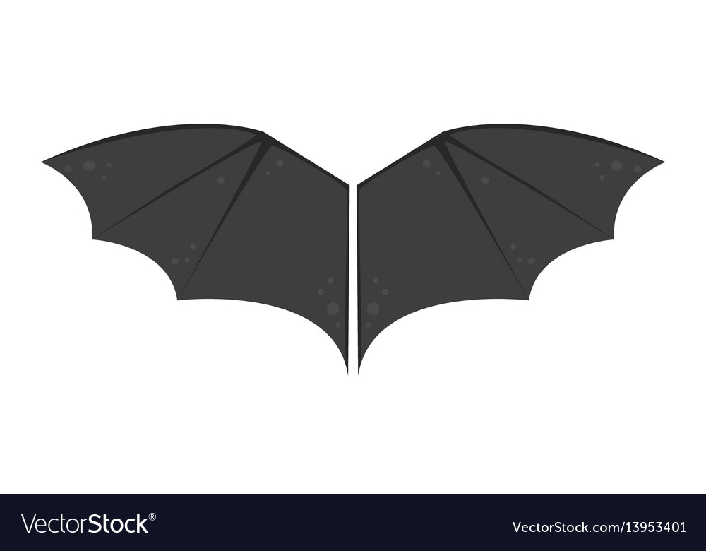Wings isolated bat black animalwildlife fly