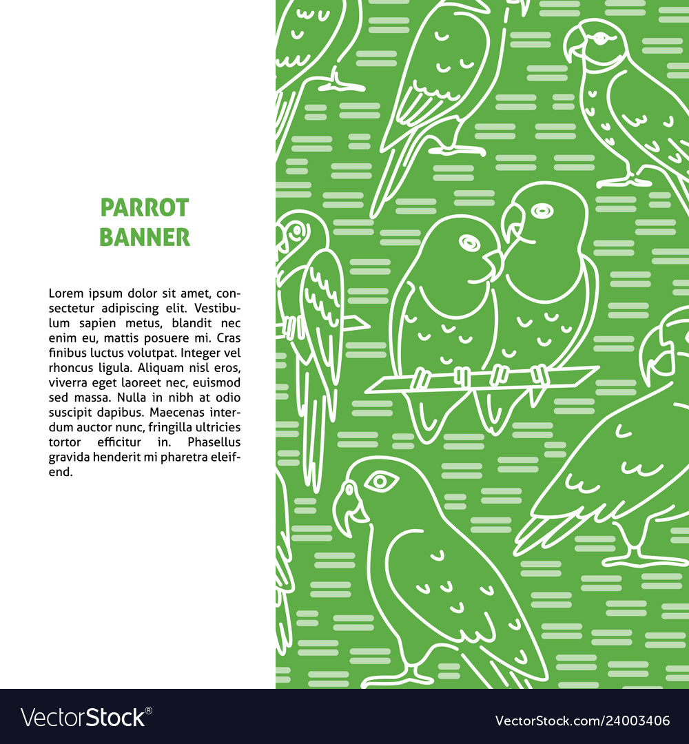 Background with parrot icons in line style and