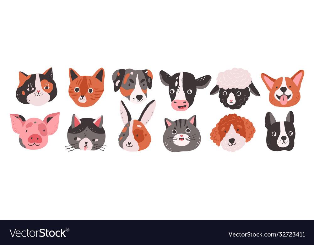 Set happy funny domestic animals or farm pet
