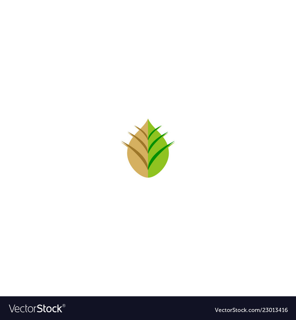 Abstract leaf ecology logo