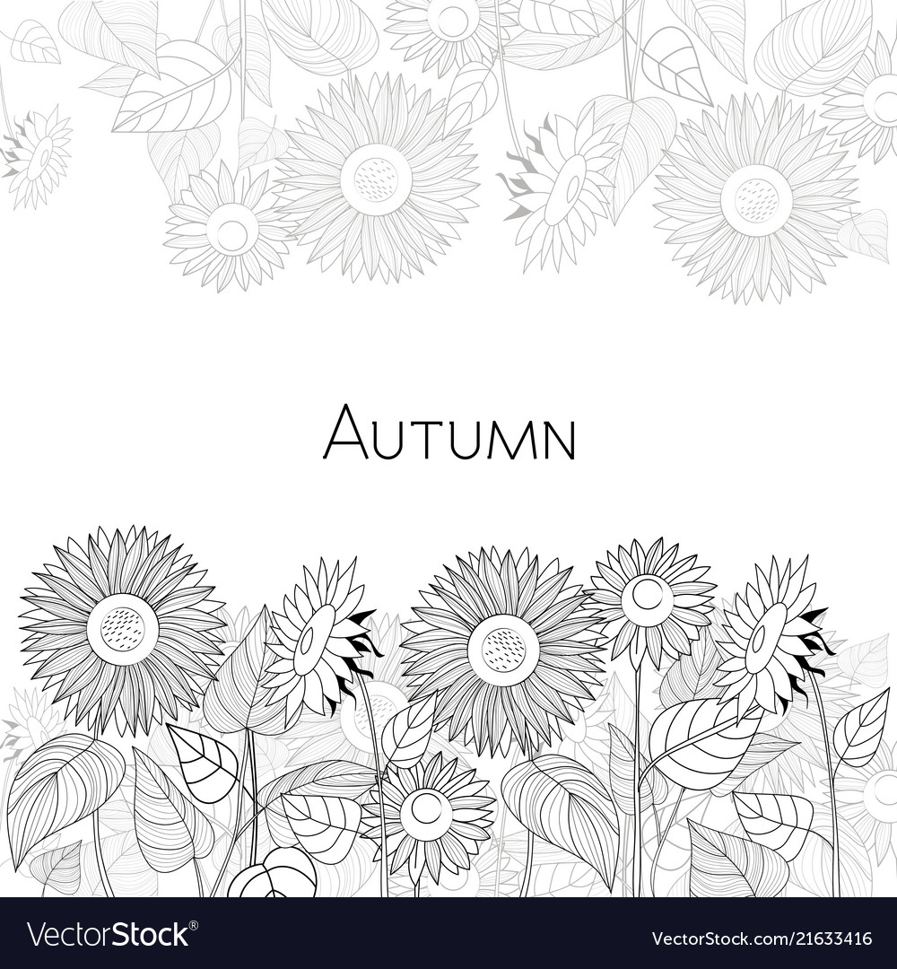Autumn Card Of Sunflowers Black And White Vector Image