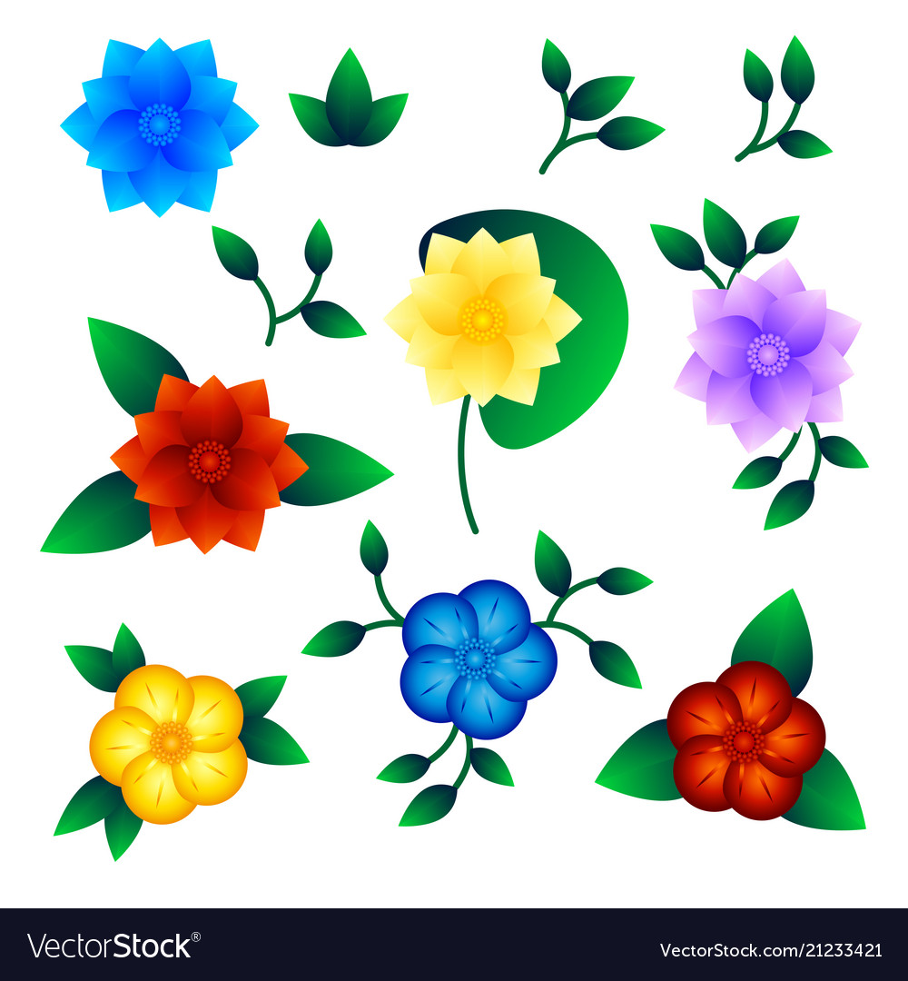 Set of exotic flower