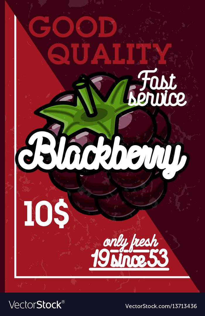 Color vintage fruit banner