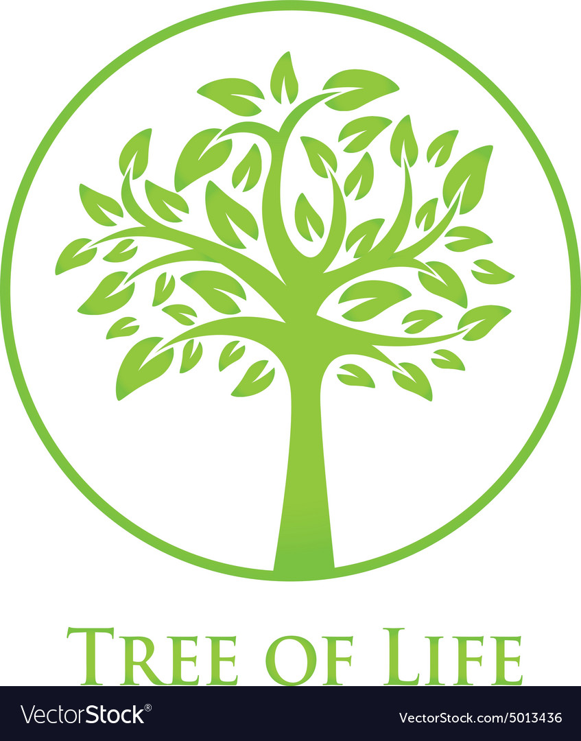 symbol of the tree of life royalty free vector image
