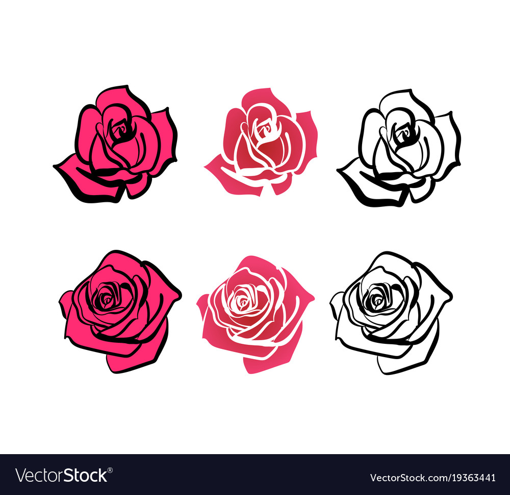 A set of roses of different shapes
