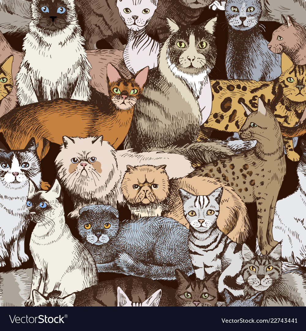 Seamless pattern with 16 hand drawn purebred cats
