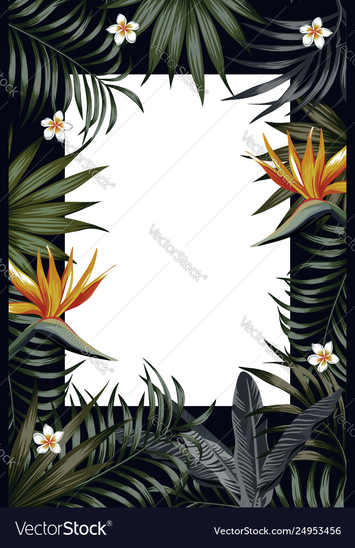 Vertical poster night jungle frame banner flowers
