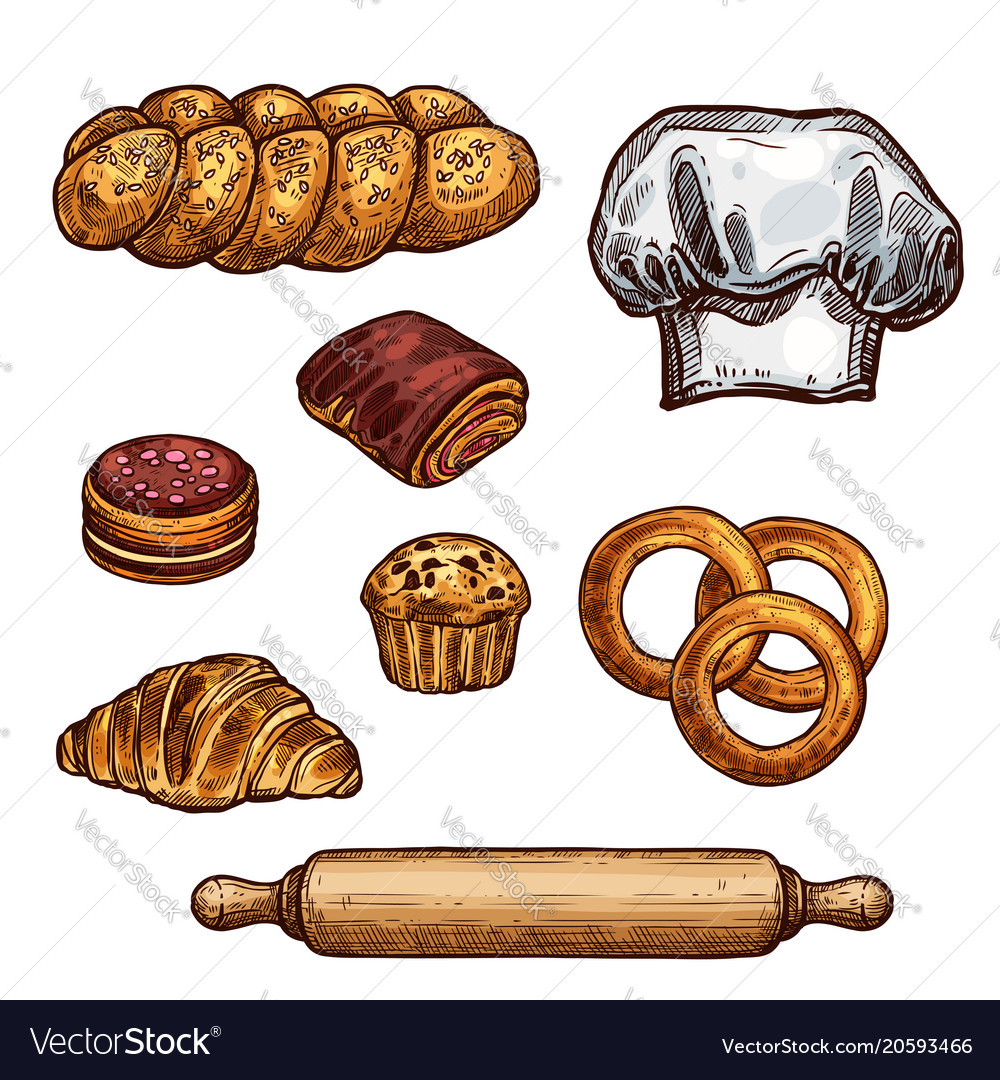 Bread croissant and bun cake and cupcake sketch