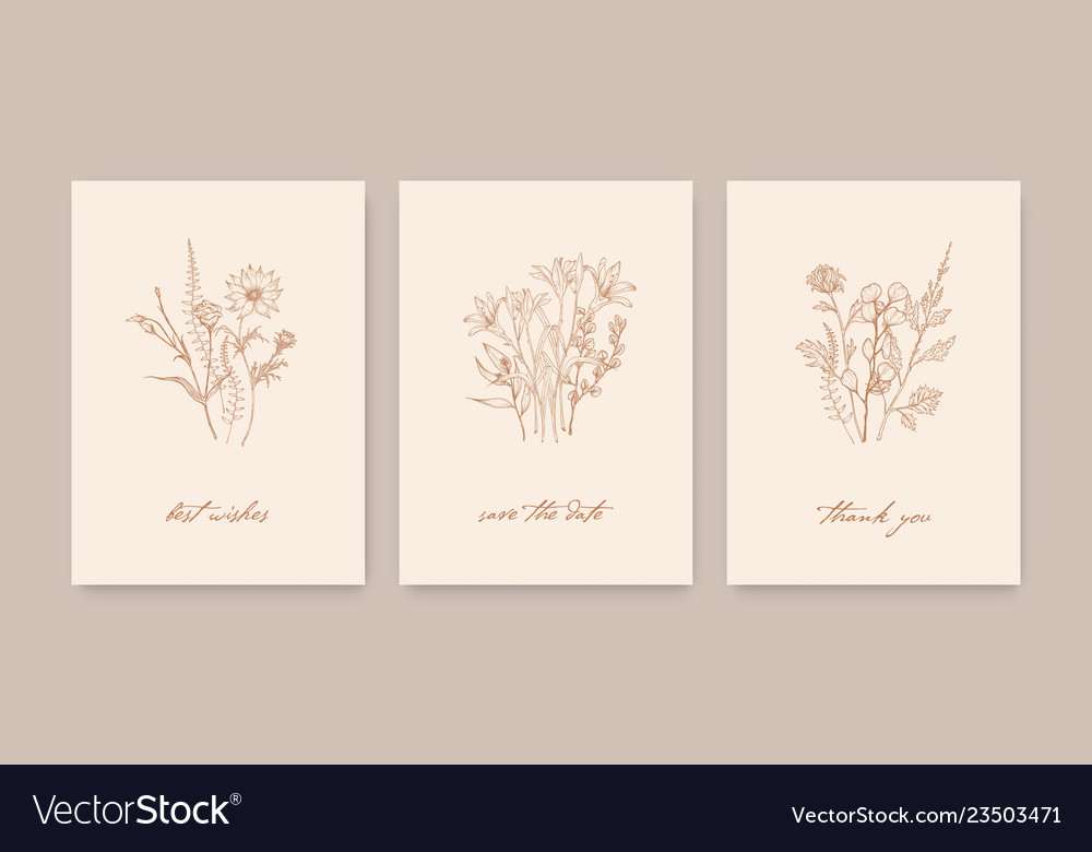 Bundle of elegant card templates decorated with