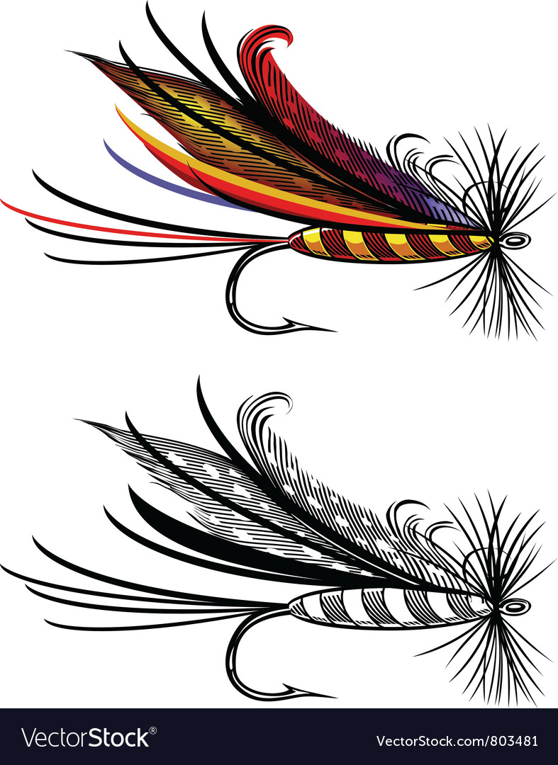 Fishing fly vector image