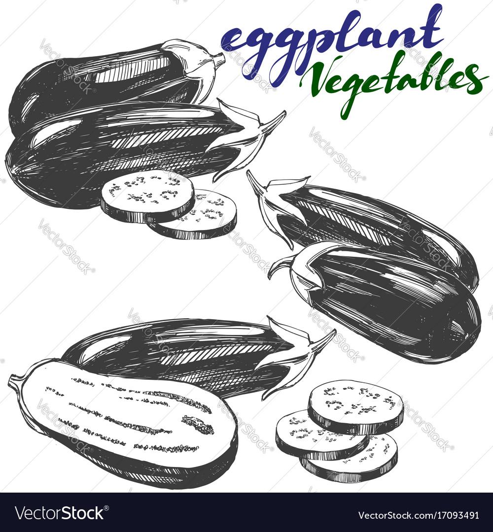 Eggplant vegetable set hand drawn