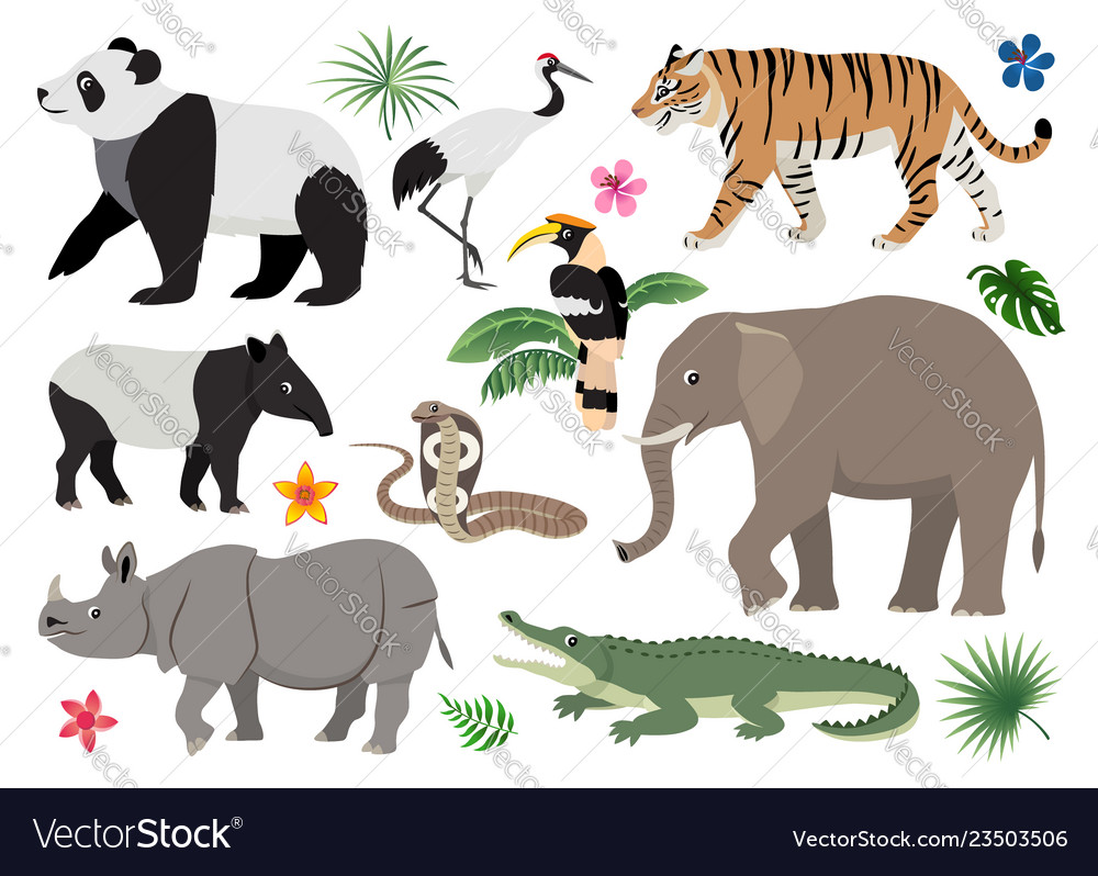 Set of cute wild animals and birds icon decor for