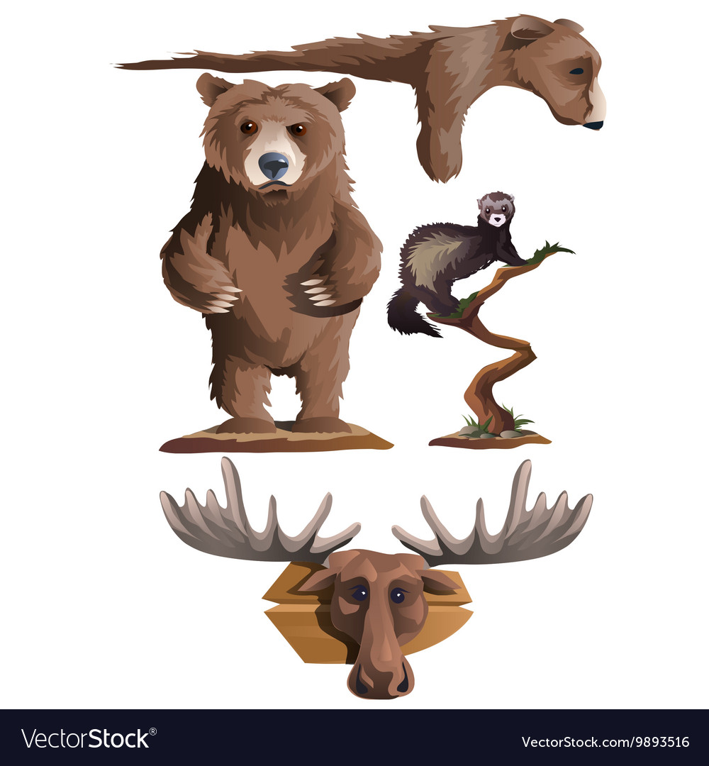 Hunting trophies bear deer and other animals