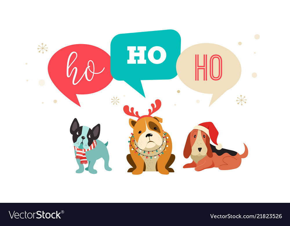 Collection of christmas dogs merry christmas