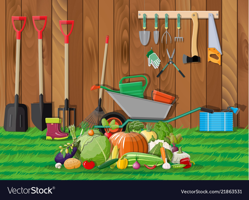 Harvest with vegetables and gardening equipment