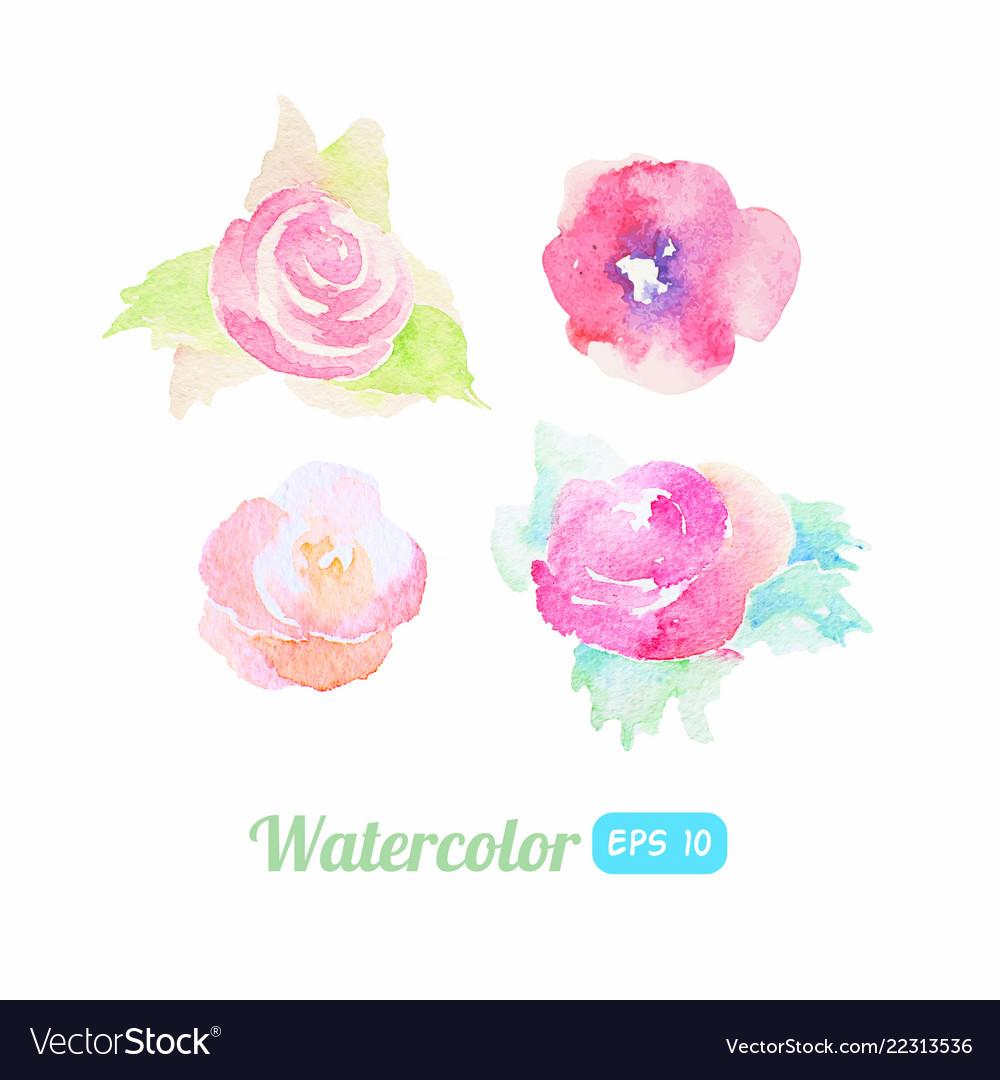 Set watercolor flower elements