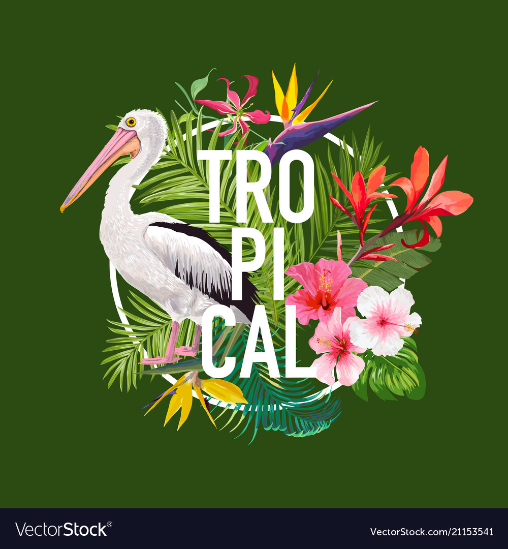 Hello summer design with tropical plants and birds