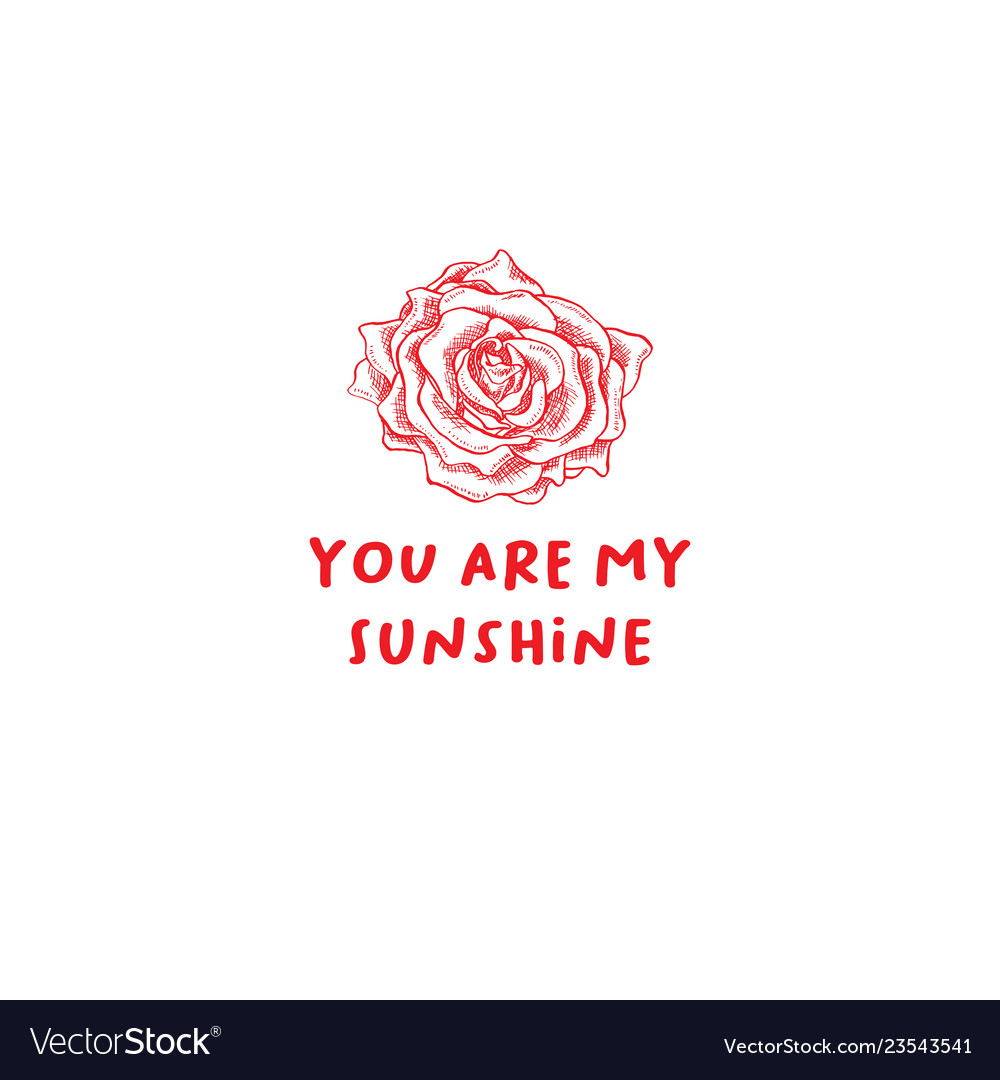 Valentines day rose greeting card or poster with