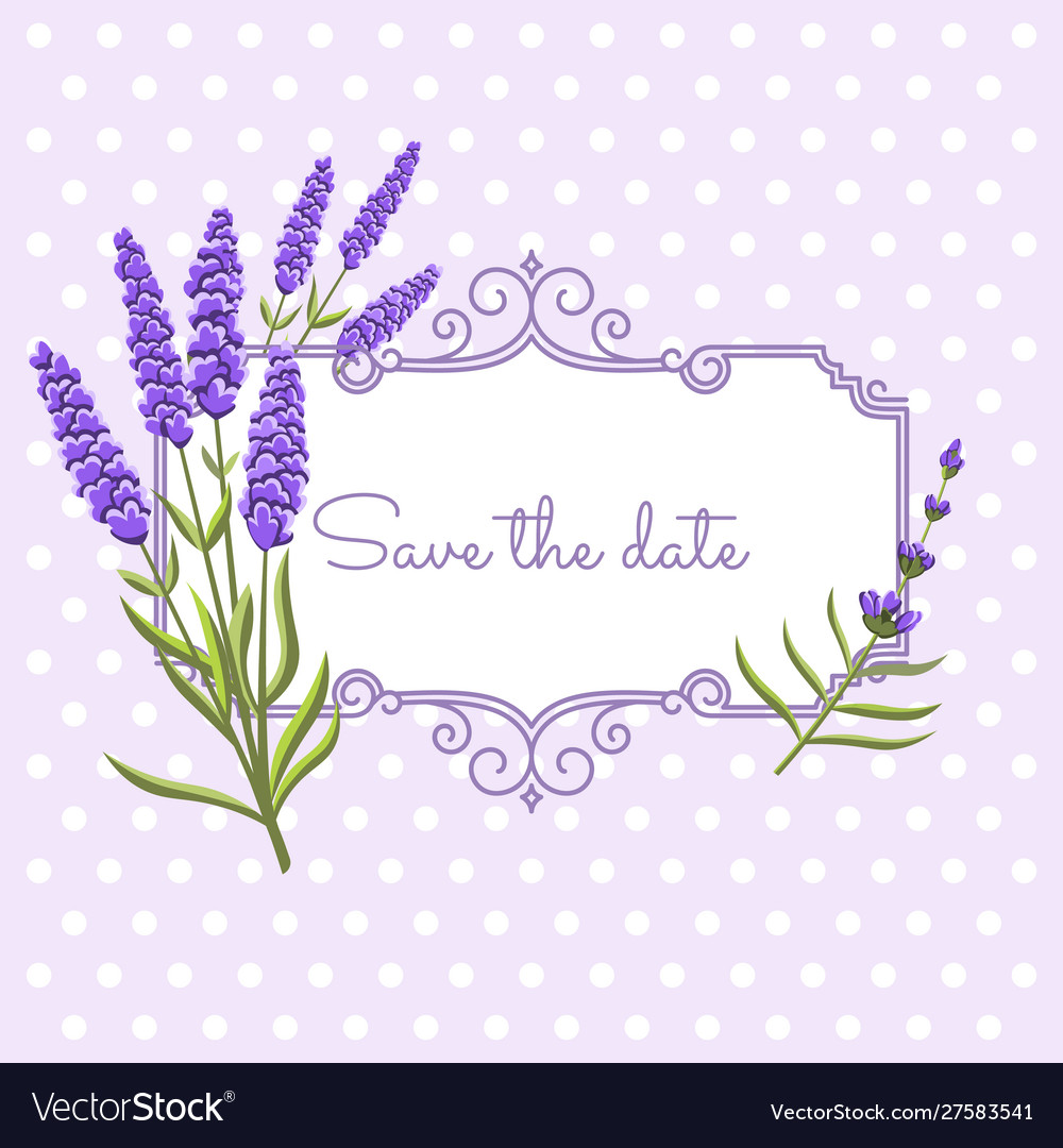 Vintage floral frame with lavender in provence vector