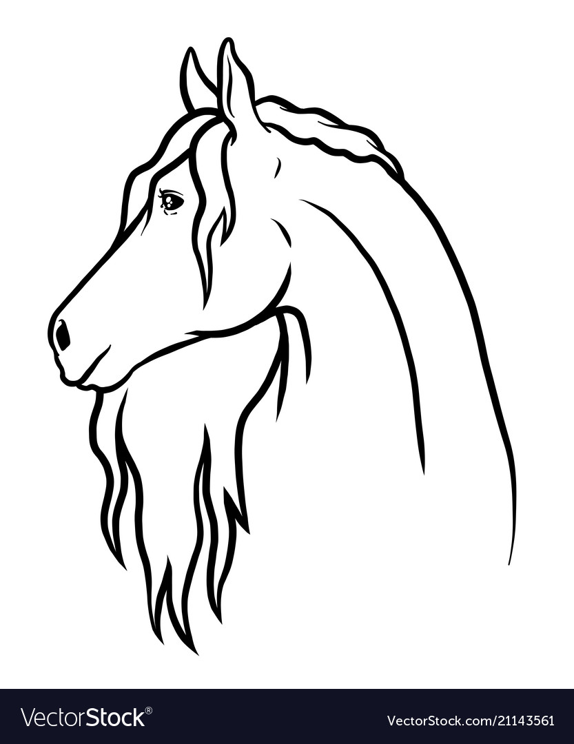 And drawn doodle horse coloring card and Vector Image