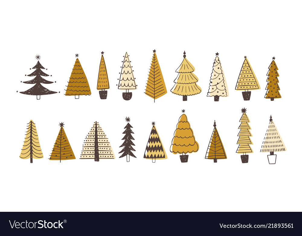 Set of various firs pines or spruces decorated